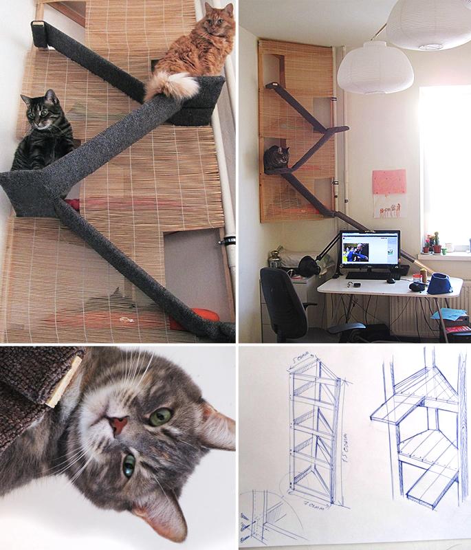 catissa_prototype